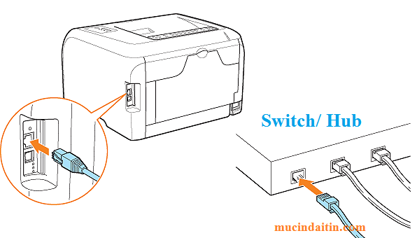 Cách cắm dây kết nối mạng Lan cho máy in