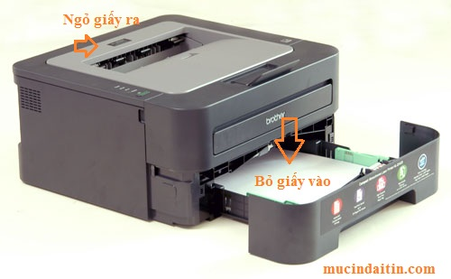 Cách để giấy vào khay giấy máy in brother